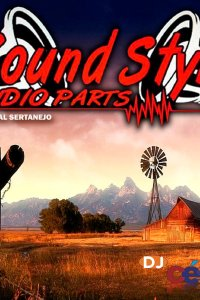 Sound Style Audio Parts - Especial Sertanejo