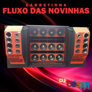 Carretinha Fluxo das Novinhas - Volume 03