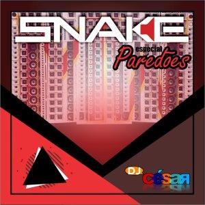 Alto Falantes Snake Especial Paredões