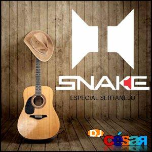 Alto Falantes Snake Especial Sertanejo