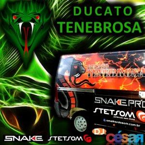 Ducato Tenebrosa - Funk Bass