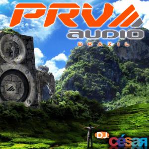 PRV Audio Brazil - 2015