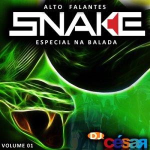 Snake Pro Alto Falantes - Especial na Balada 2013